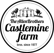 Castlemine Logo